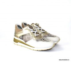 Geox Sahira trainer in cream & gold